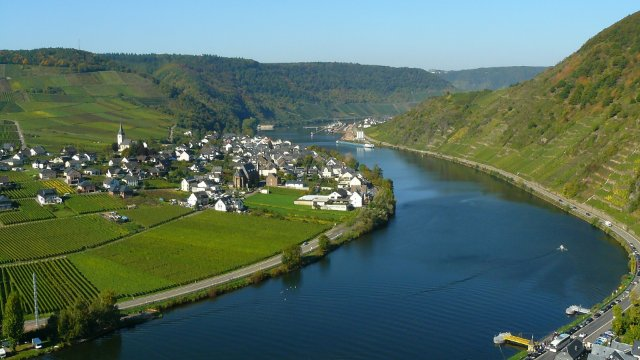 Mosel Clean Up-Image