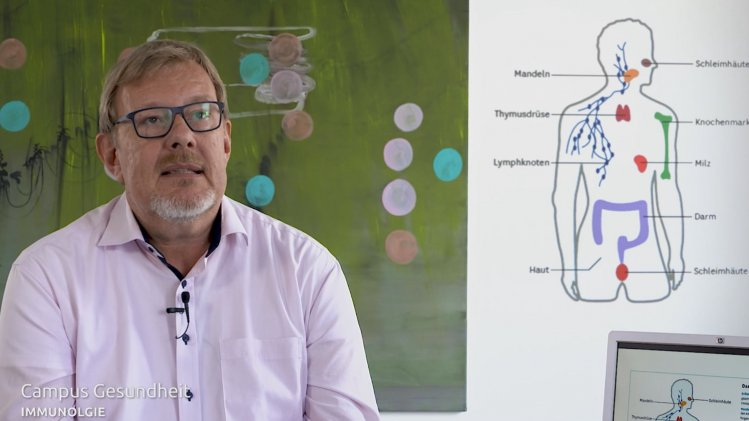 Immunologie - Abwehrmechanismen des Körper