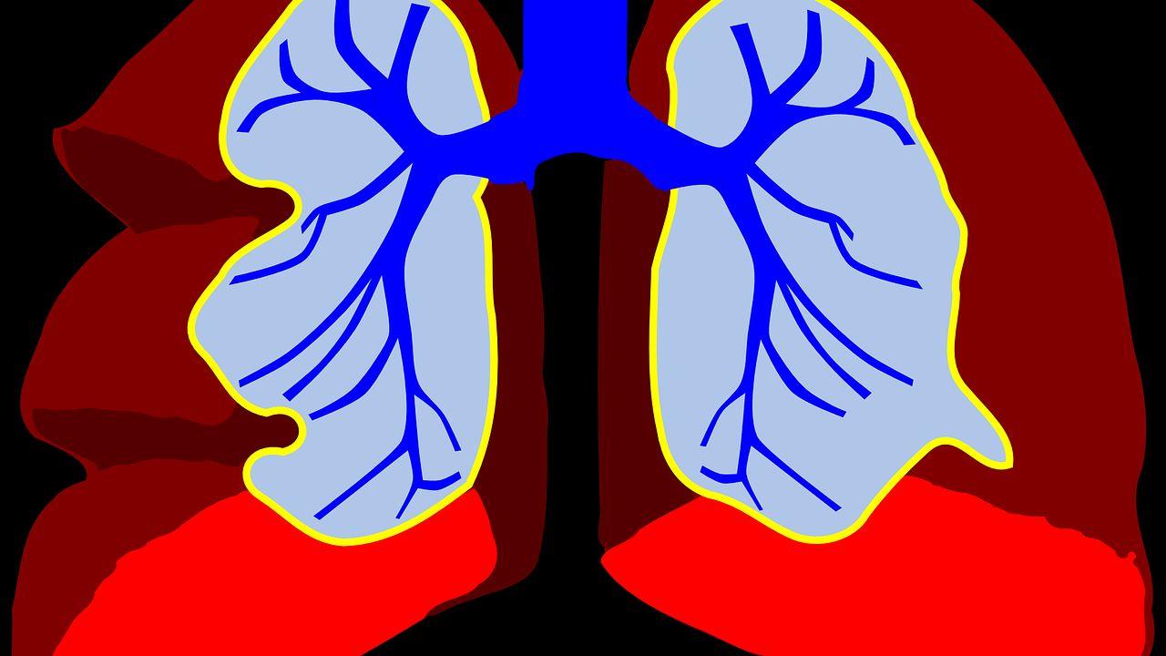 Corona-Risiko bei Atemwegserkrankungen: Pneumologe Dr. Frank Heimann gibt Auskunft