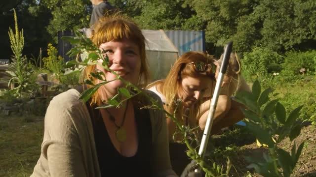 Beet statt Beton. Urban Gardening bringt Bürger in Bewegung