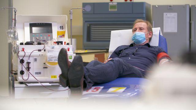 Plasmaspende für Antikörper-Therapie: Genesene Patienten helfen COVID-19-Erkrankten