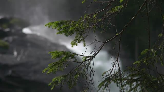 Im Nationalpark Hohe Tauern: die Kraft der Krimmler Wasserfälle