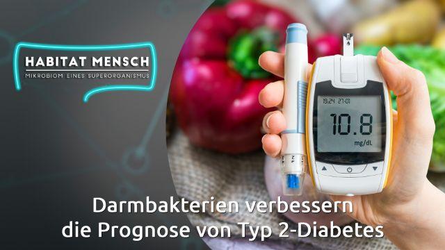 Darmbakterien verbessern die Diagnose und Prognose von Typ-2-Diabetes