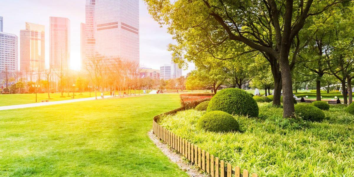 Städte-Grün erhöht die Lebenserwartung
