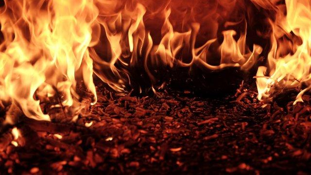 Aus verbrannter Erde kann man lernen-Image