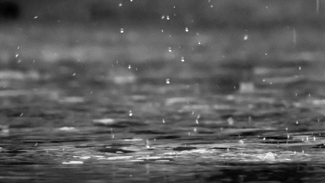 Gewitterbilanz - keine großen Schäden -Image