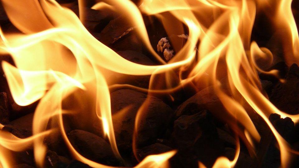 Zeugen gesucht wegen Brand in Kindsbacher Schrebergartenanlage -Image