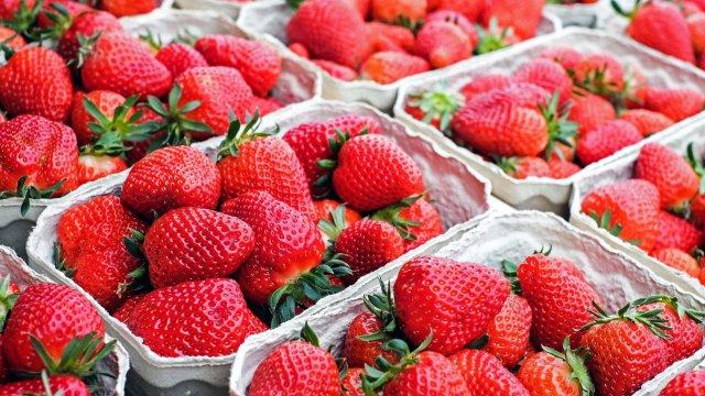 Sommerlicher Erdbeer-Spinat-Salat mit Pinienkernen und Avocado-Image
