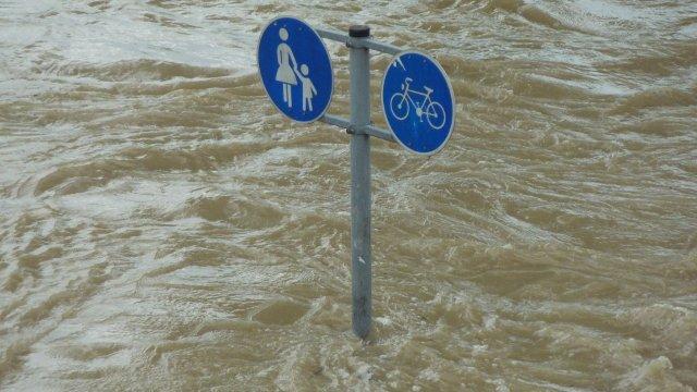 Landkreistag Rheinland-Pfalz fordert neue Warnsysteme nach Hochwasserkatastrophe-Image
