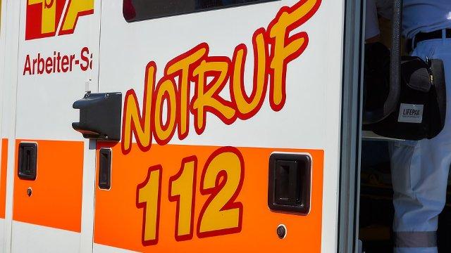 Unfall mit Kutsche in Otterberg: Kutscher, Mitfahrerin und Pferd verletzt-Image